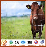 Galvanized durable metal livestock fence corral fence panels for horses factory price