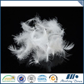 Factory directly provide high quality soft washed white goose down feather