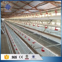 30 Years' factory supply battery chicken egg layer cage