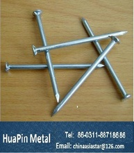 Building common wire nail