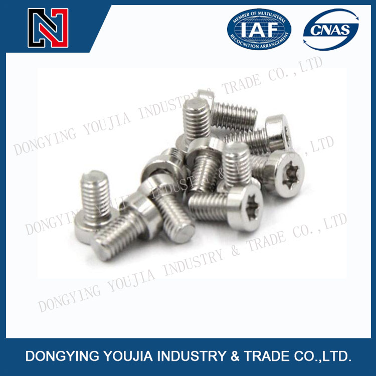 GB6191 Stainless Steel Cheese head screw with hexalobular slot