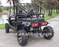 EPA Approval 4X4 Buggy 1100cc
