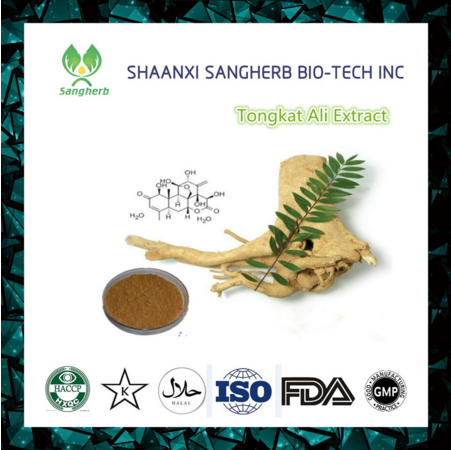 hot selling 2017 ginseng root extract powder with best price
