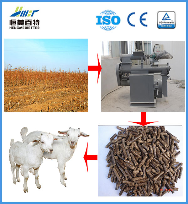 die ring wood briquette empty fruit bunch pellet making machine for chicken feed