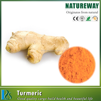 Zingiber officinalis ginger root extract powder, Ginger root extract