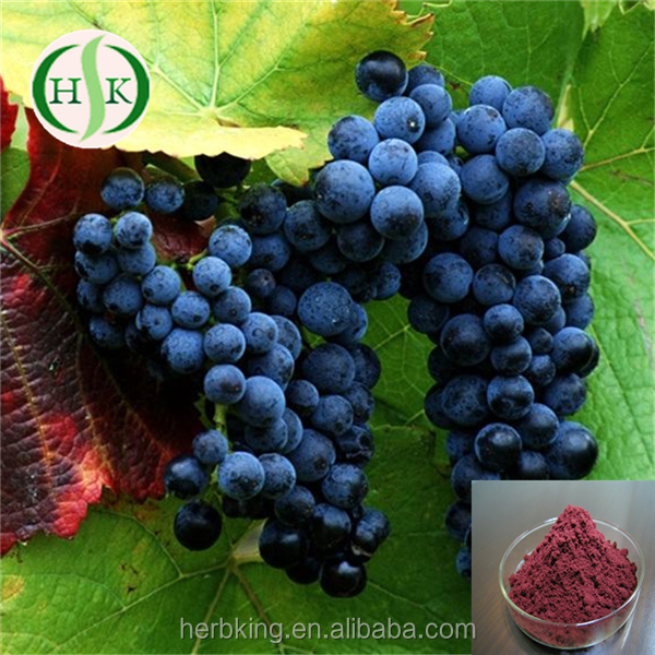 Factory Supply Fresh Wild Blueberry Powder Blueberry Juice Powder