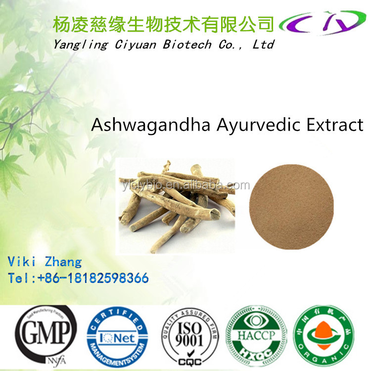 GMP factory Great quality Ashwagandha Extract Ashwagandha P.E., Withania somnifera, India Ginseng Extract for Antioxidant