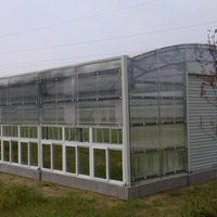 Plastic Tunnel Green House For Agricultural