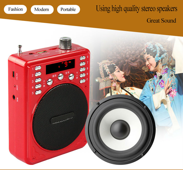 Portable Voice Amplifier, Mini Amplfier,Amplifier With FM Radio