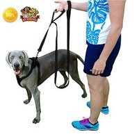 2 Handles For Good Control Padded Handle Training Traffic Leash Extra Strong Large Dogs