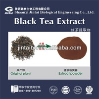 tea polyphenols 30% Instant Black Tea Powder