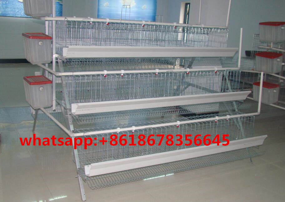 Poutlry equipments automatic chicken layer cage for sale in philippines for 96 chickens