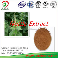 Comptitive price and Top quality Nettle Extract Beta-sitosterol