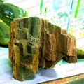 CBRL Professional Fossilized Wood For Aquarium Decorative Wood