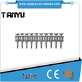 Good toughness steel collated smooth/step shank concrete nails