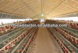 qingdao factory export poultry house design with light steel structure