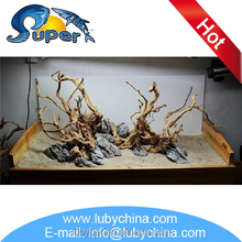 Fashionable driftwood art with great price