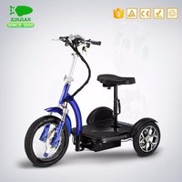 electric 48V 800W tricycle/electric tricycle for adults