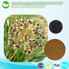 Leek Seed P.E.,Tuber Onion Seed extract, chinese chive seed extract