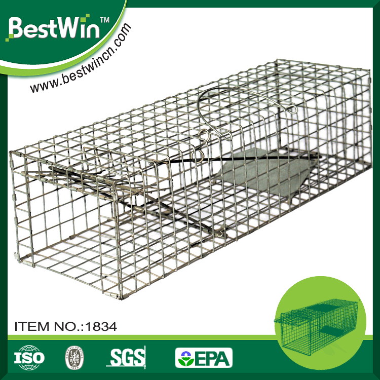 ISO9001 passed factory humane live indoor metal live animal trap