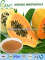 100% Natural papaya seed extract-powder Papain