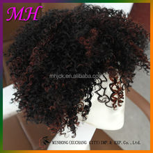 Pretty Girl Synthetic Brazilian Kinky Curly Full Lace Wigs For Black Women