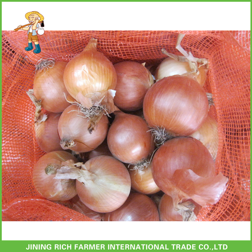 Yellow Baby Fresh Onion 20Kg
