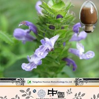 Natural Plant,Prunella Vulgaris Extract 4:1,Prunella Vulgaris