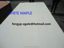 Rotary cut white maple fancy veneer plywood