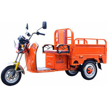 luxury 3 doors type loading 300kg small electric flatbed truck