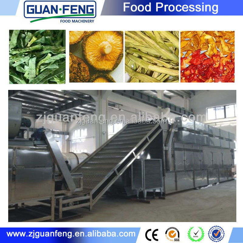 Belt Dryer Equipment / Conveyor Belt Drying Machine Raisin Processing Machine