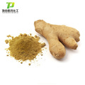High quality of 100% natural Ginger extract Gingerols