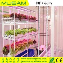 Advanced nft hydroponics growing gully system for herb