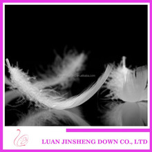 700-800 Filled power washed wholesale duck feathers goose down pillow inner