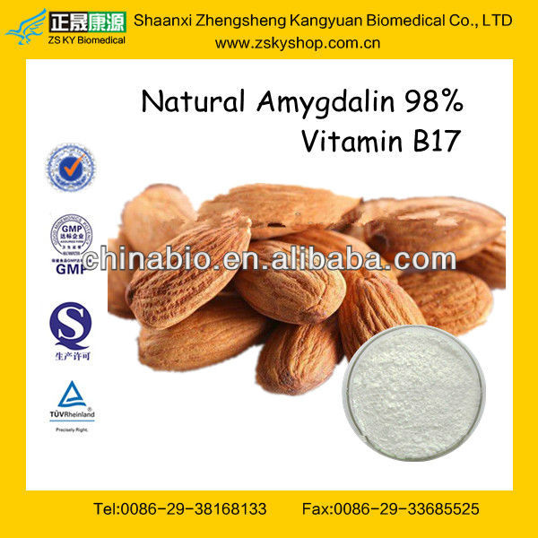 GMP Certified Manufacturer Supply Natural Almond Extract Powder