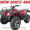 New 300cc quad