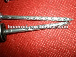 galvanized special steel nails