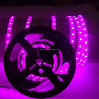 Led outdoor rope light 5050 5m/roll with IR remote controller led outdoor decorative IR led rope lighting