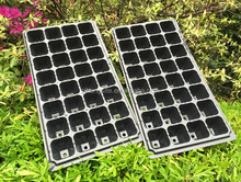 Quality First Seed Germination Growing Tray