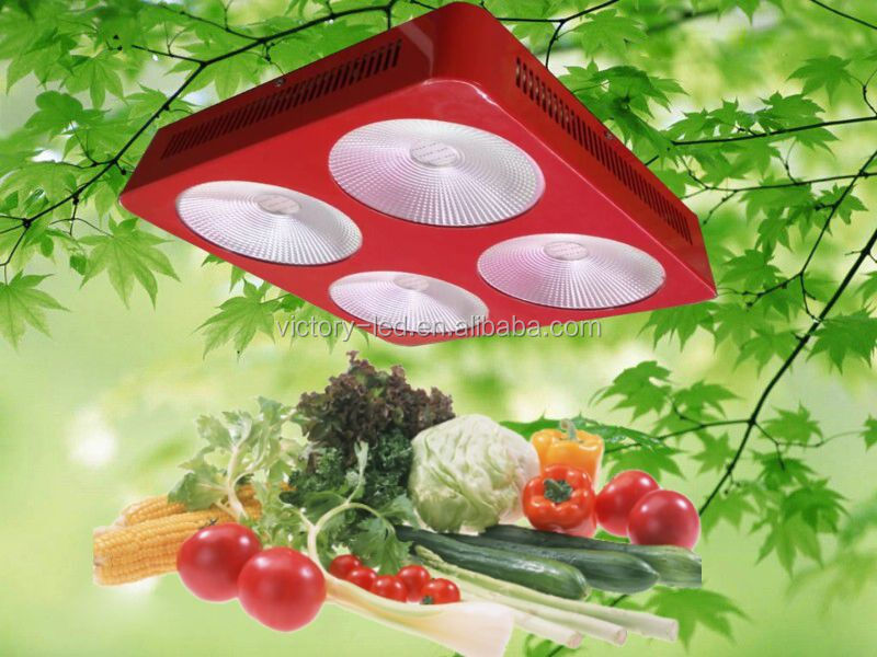 NEW product COB SPIDER led panel 300w led grow panel 2013 led light reviews