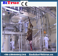 livestock meat processing equipment for cow