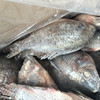 Chinese Seafood Supplier Supply Frozen Nice