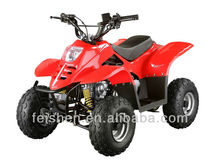 Feishen cheap kids atv 50cc CE atv chian drive dirt quad(FA-C50)
