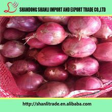 Buy cheap onion from China ,new crop red onion factory price