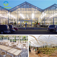 Large multi span agriculture Glass green house