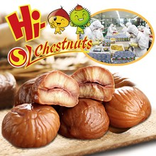 Hot sale roasted peeled organic Halal chestnut snack
