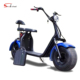Citycoco 2000W Removable Battery Adult Electric Scooter 2 Wheels Electric Motorcycle for Adult