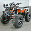 /product-detail/popular-manual-clutch-250cc-sport-atv-farm-atv-with-shineray-engine-60447218714.html