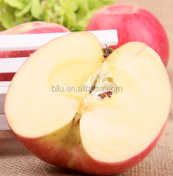 2017 export fresh red delicious apple fruit fresh apple in china