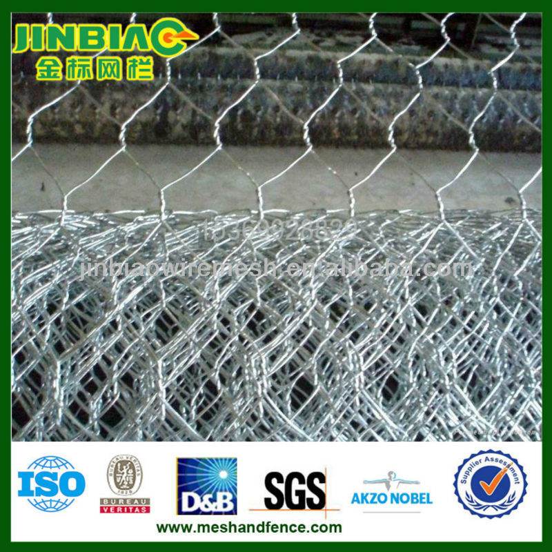 Chicken Steel Galvanized Hexagonal Wire Netting ( Factory & Exporter)